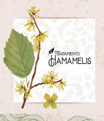 Tratamiento Hamamelis