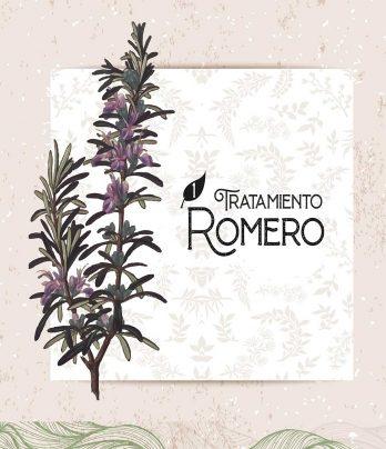 Tratamiento Romero